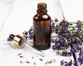 lavender oil for sale