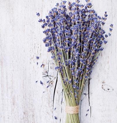 Lavender Bundles for weddings