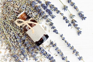 Dried Lavender for Sale,Bulk Lavender, Dried Lavender Bunches