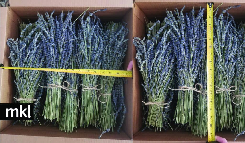 how many stems are in a lavender bundle