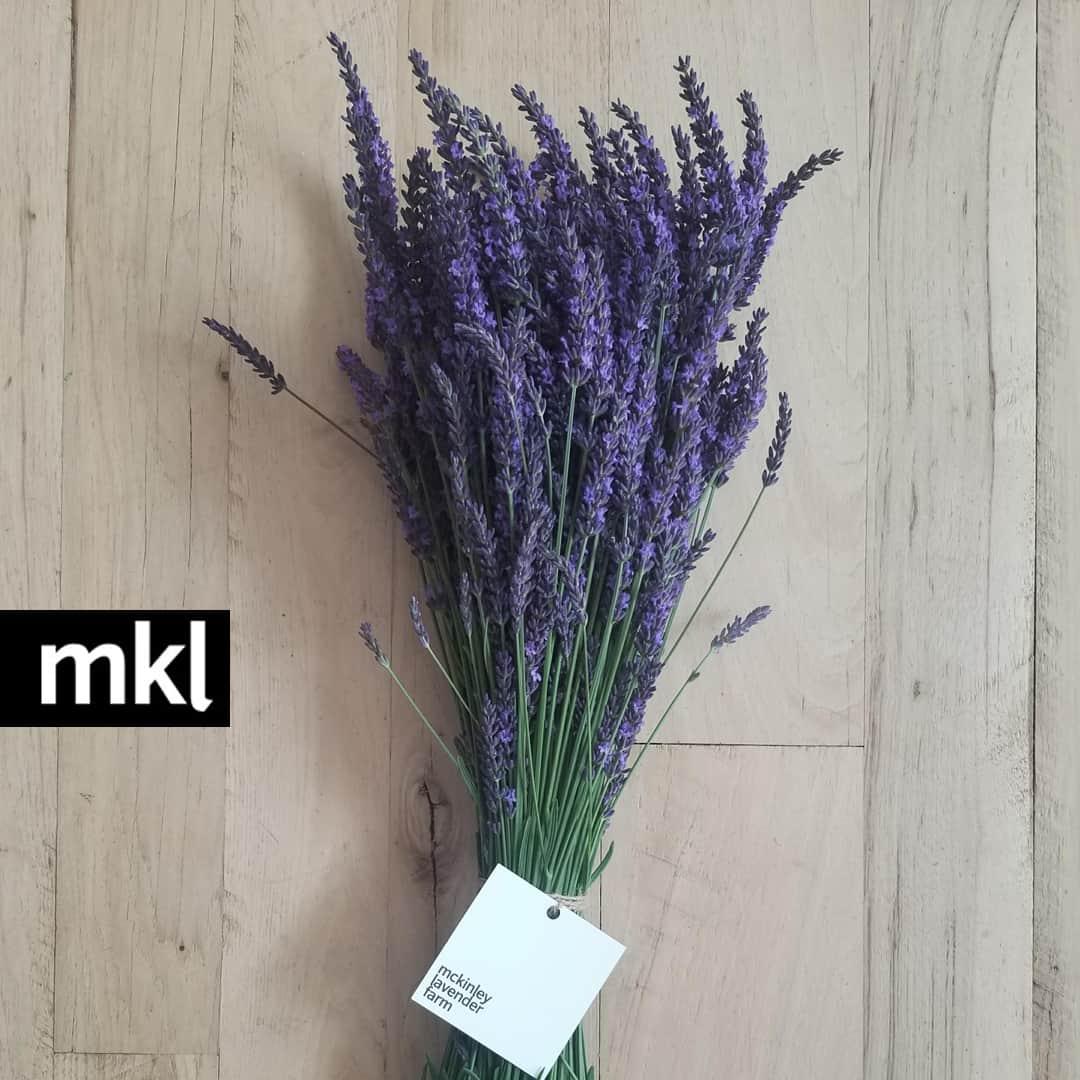 fresh lavender kelowna